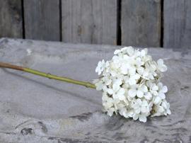 Konstgjord Hortensia H50 cm creme , hemmetshjarta.se