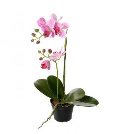 Konstgjord Phalaenopsis 45 cm Dammiglila , hemmetshjarta.se