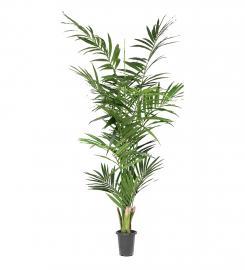 Konstgjord Kentia Palm 210 cm * , hemmetshjarta.se