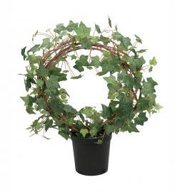 Konstgjord Murgröna planta på båge 70 cm , hemmetshjarta.se