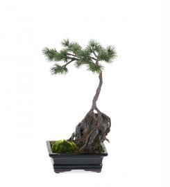 Konstgjord Bonsaiträd 35 cm , hemmetshjarta.se