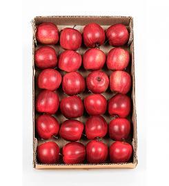 Konstgjord Äpple 1st , hemmetshjarta.se