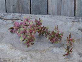 Fleur Murgröna 68,5 cm , hemmetshjarta.se