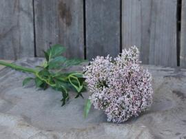 Fleur Skärmblomma H68,5 cm , hemmetshjarta.se