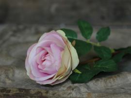 Fleur Rose H71 / Ø10 cm rosa , hemmetshjarta.se