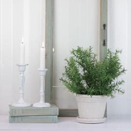 Konstgjord Asparagus 28 cm , hemmetshjarta.se