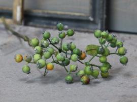 Fleur Vinterbär Gren H43 cm grön , hemmetshjarta.se