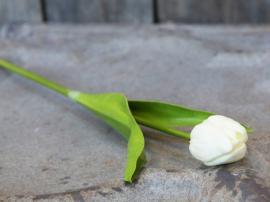 Fleur Tulpan H47 cm vit , hemmetshjarta.se