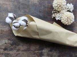 Vecka 50 Fleur Äkte torkade bomullsblommor L60 cm creme , hemmetshjarta.se