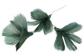 Fjädrar bukett till ris 12- pack - mörk grönblå , hemmetshjarta.se