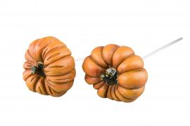 Pumpa/Stick Orange Mix Poly 6cm 2-pack * , hemmetshjarta.se
