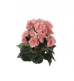 Konstgjord Begonia 28 cm , hemmetshjarta.se