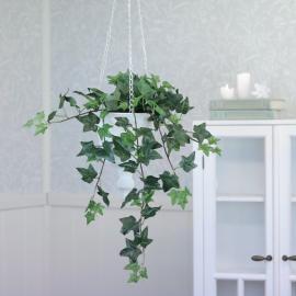 Konstgjord Murgröna planta 60 cm , hemmetshjarta.se