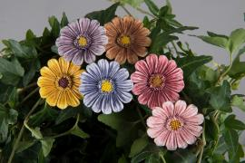 Blom/Stick Färgmix 3cm 6-pack , hemmetshjarta.se