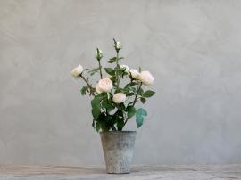 Fleur Rose i gl. Keramikkruka H44 cm rosa , hemmetshjarta.se