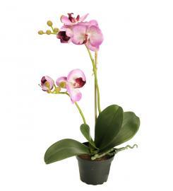 Konstgjord Phalaenopsis 45 cm Ljuslila , hemmetshjarta.se