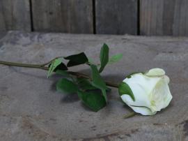 Fleur Rose H40 cm vit , hemmetshjarta.se