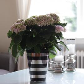 Kruka med ränder Lyx 21,5 cm svart/silver , hemmetshjarta.se