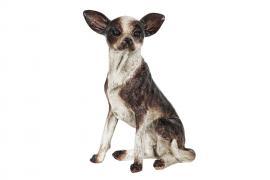 Hund Chihuahua Glamour 20x30cm , hemmetshjarta.se