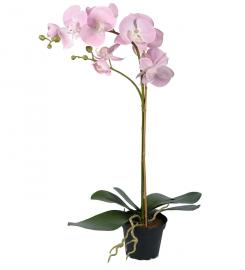 Konstgjord Phalaenopsis 60 cm Rosa , hemmetshjarta.se