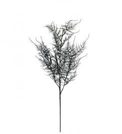 Konstgjord Plumosus 70 cm , hemmetshjarta.se