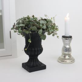 Kruka Pokal svart - 18 cm , hemmetshjarta.se