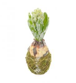 Konstgjord Hyacint med snö 20 cm , hemmetshjarta.se