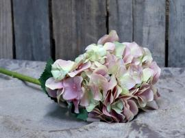 Fleur Hortensia H52 cm rosa , hemmetshjarta.se