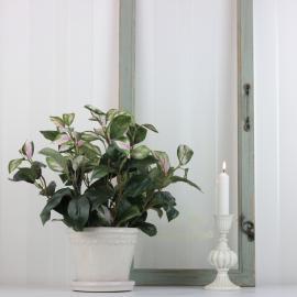 Konstgjord Hoya 34 cm , hemmetshjarta.se