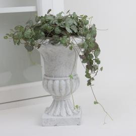 Kruka Pokal antikvit - 18 cm , hemmetshjarta.se