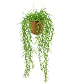 Konstgjord Hoya 45 cm , hemmetshjarta.se