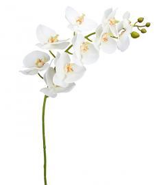 Konstgjord Orkidéstjälk Phalaenopsis. 105 cm , hemmetshjarta.se