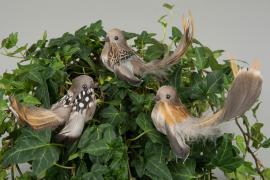 Fågel/Stick Vingar Natur 11cm 3-pack , hemmetshjarta.se