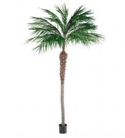 Konstgjord Phoenix Palm 300 cm * , hemmetshjarta.se