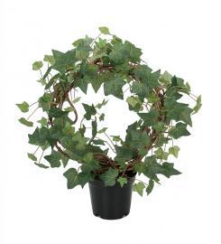 Konstgjord Murgröna planta på båge 55 cm , hemmetshjarta.se