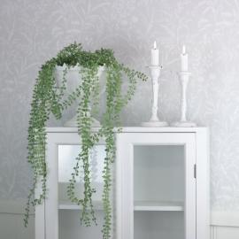 Konstgjord Dischidia 70 cm ** , hemmetshjarta.se