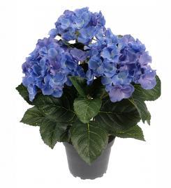 Konstgjord Hortensia 30 cm Blå , hemmetshjarta.se