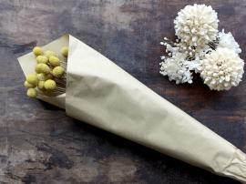Vecka 50 Fleur Äkta torkade trummor blommor L58 cm karamell , hemmetshjarta.se