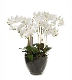 Konstgjord Phalaenopsis 90 cm , hemmetshjarta.se