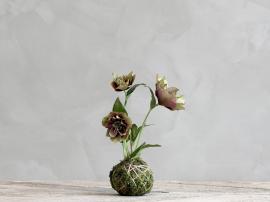 Fleur Julros med myssboll H22 cm vinröd , hemmetshjarta.se
