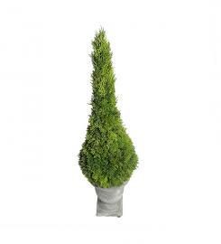 Konstgjord Cypress 75 cm , hemmetshjarta.se