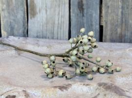Fleur Gren med frökapslar H62 cm grön , hemmetshjarta.se