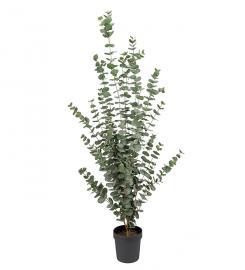 Konstgjord Eucalyptus 170 cm , hemmetshjarta.se