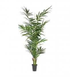 Konstgjord Kentia Palm 240 cm * , hemmetshjarta.se