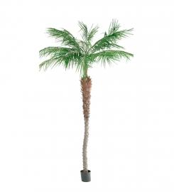 Konstgjord Phoenix Palm 240 cm * , hemmetshjarta.se