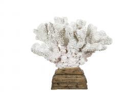 Korall Vit på fot 23x19x28cm , hemmetshjarta.se
