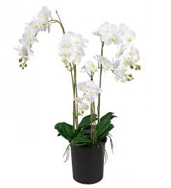 Konstgjord Phalaenopsis 130 cm , hemmetshjarta.se
