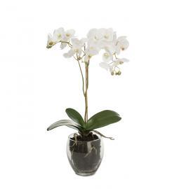 Konstgjord Phalaenopsis 65 cm , hemmetshjarta.se