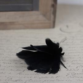 Fjädrar bukett till ris 12- pack - svart , hemmetshjarta.se