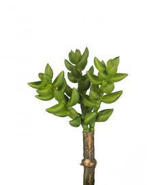 Konstgjord Succulent 10 cm , hemmetshjarta.se